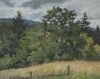 Tualatin-Mountains-in-Late-Spring